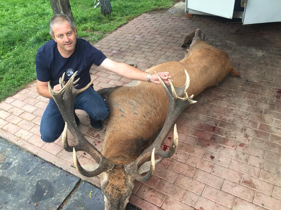 Stag 10kg shoot by French hunter